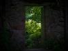 A Forgotten Door