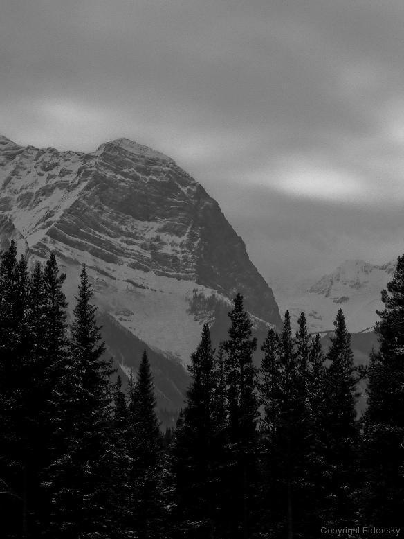 Darkening Hills